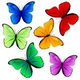 Coleção colorida da borboleta isolada no branco Fotografia de Stock