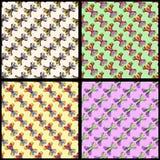 Coleção colorida do fundo da borboleta da ilustração do vetor Imagem de Stock