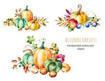A coleção colorida do outono com queda sae, ramifica ilustração royalty free