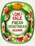 Coleção colorida dos vegetais Foto de Stock Royalty Free