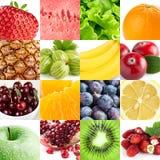 Coleção com frutos e bagas da cor Fotos de Stock Royalty Free