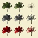 coleção da árvore 3d Imagens de Stock