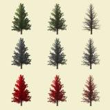 coleção da árvore 3d Fotografia de Stock Royalty Free