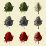 coleção da árvore 3d Fotos de Stock Royalty Free