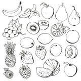 Coleção da baga da fruta Imagens de Stock Royalty Free