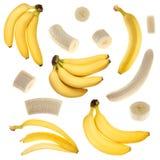 Coleção da banana Imagens de Stock