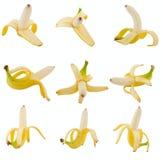 Coleção da banana das frutas Imagens de Stock Royalty Free