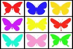 Coleção da borboleta colorida Fotografia de Stock Royalty Free