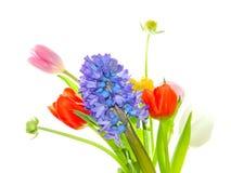 Coleção da flor da mola mostrada em silhueta no fundo branco fotos de stock royalty free