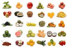 Coleção da fruta. Foto de Stock