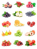 Coleção da fruta Foto de Stock Royalty Free