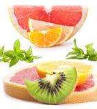 Coleção da fruta foto de stock