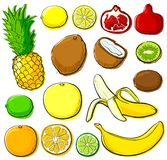 Coleção da fruta tropical Imagens de Stock