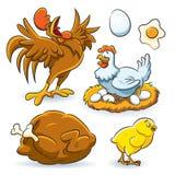 Coleção da galinha Imagem de Stock