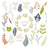 A coleção da mola floresce, as folhas, dente-de-leão, grama Imagens de Stock