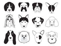 Coleção da raça dos cães Fotos de Stock Royalty Free
