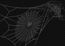 Coleção da teia de aranha, no preto, fundo transparente Fotos de Stock Royalty Free