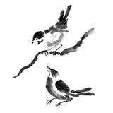 Coleção da tinta de Sumi-e dos pássaros Pintura da aguarela Fotos de Stock
