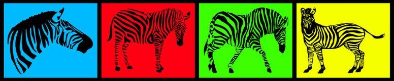 Coleção da zebra Imagem de Stock Royalty Free
