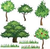 Coleção das árvores Ilustração Stock