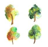 Coleção das árvores da aquarela ilustração stock