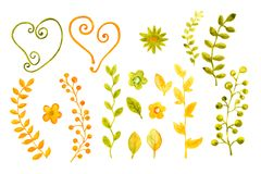 Cole??o das aquarelas das flores e das folhas Para o projeto da tampa, empacotando, fundos ilustração do vetor