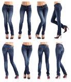 Coleção das calças de brim das mulheres em poses diferentes Foto de Stock Royalty Free