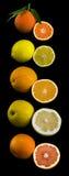 Coleção das citrinas Imagens de Stock