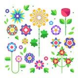 Coleção das flores botões e folhas Vetor Fotografia de Stock
