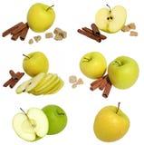 Coleção das maçãs Imagem de Stock