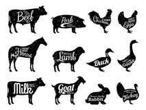 A coleção das silhuetas dos animais de exploração agrícola, açougue etiqueta moldes