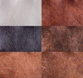 Coleção das texturas de couro Foto de Stock