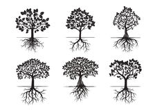 Coleção de árvores e de raizes pretas Ilustração do vetor Imagens de Stock Royalty Free
