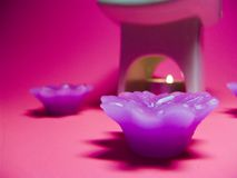 Coleção de Aromatherapy imagens de stock