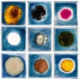Coleção de azulejos vitrificados feitos a mão Imagens de Stock Royalty Free