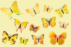 Coleção de borboletas amarelas da fantasia Foto de Stock Royalty Free