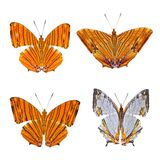 Coleção de borboletas coloridas Imagem de Stock
