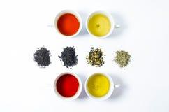 Coleção de chás diferentes em uns copos com folhas de chá em um fundo branco Fotografia de Stock Royalty Free
