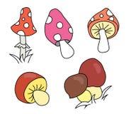 Coleção de cogumelos diferentes dos desenhos animados Imagens de Stock