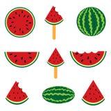 Coleção de diferente uma melancia fresca da fatia Fotos de Stock Royalty Free