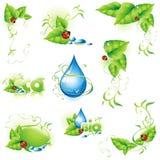 Coleção de elementos verdes do projeto. Imagens de Stock Royalty Free