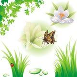 Coleção de elementos verdes do projeto. ilustração do vetor