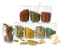 Coleção de especiarias aromáticas Fotografia de Stock