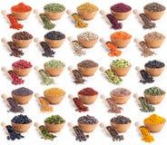 Coleção de especiarias diferentes e das ervas isoladas no branco fotografia de stock royalty free
