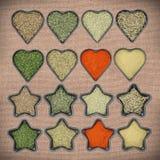 Coleção de especiarias secas das ervas Fotografia de Stock