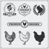 Coleção de etiquetas da carne da galinha, de crachás, de emblemas e de elementos do projeto Fotos de Stock Royalty Free