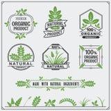 Coleção de etiquetas do alimento biológico e de elementos do projeto Foto de Stock Royalty Free