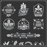 Coleção de etiquetas do alimento biológico e de elementos do projeto Imagens de Stock Royalty Free