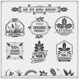 Coleção de etiquetas do alimento biológico e de elementos do projeto Fotografia de Stock