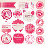Coleção de etiquetas e de emblemas dos cosméticos Foto de Stock